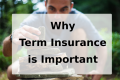 important of term insurance